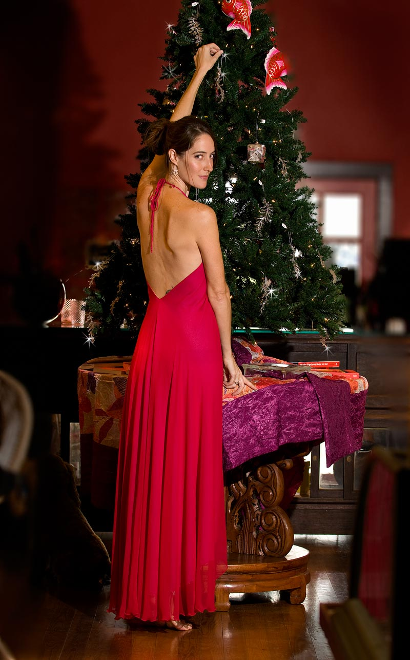 Isaura Silk Holiday Dress