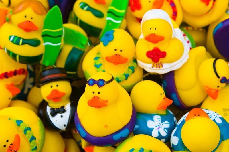 Rubber ducky for bride and groom, aloha shirt, lei, surfer and more.