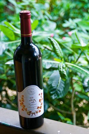 ZD cabernet Saugvignon