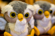 Baby Owls by Trudi